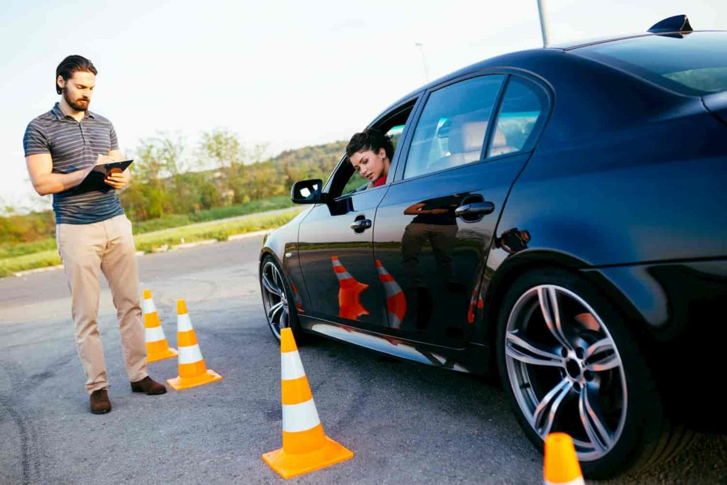 professional driving instructors